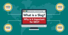 Here's How to Optimize a Slug Correctly Like a Pro